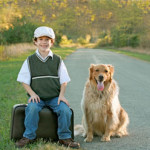 how does divorce affect children, boy and dog