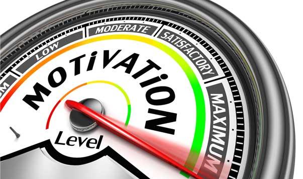 Goal Motivation and Risk Tolerance Test