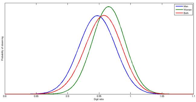 digit ratio theory