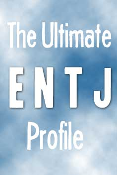 ENTJ Personality Type [The Fieldmarshal]