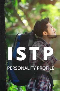 ISTP Personality Type [Analyser, Crafter, Artisan, Pragmatist]